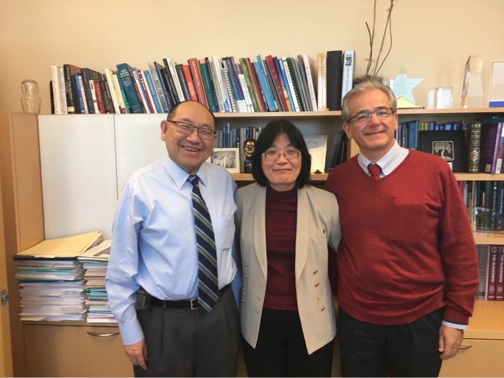 University of Michigan Prof. Paul Lee, Profª. Suzana Matayoshi e Prof. Mário Monteiro